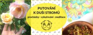 Putování k duši stromů - meditační procházka @ Břevnovský klášter